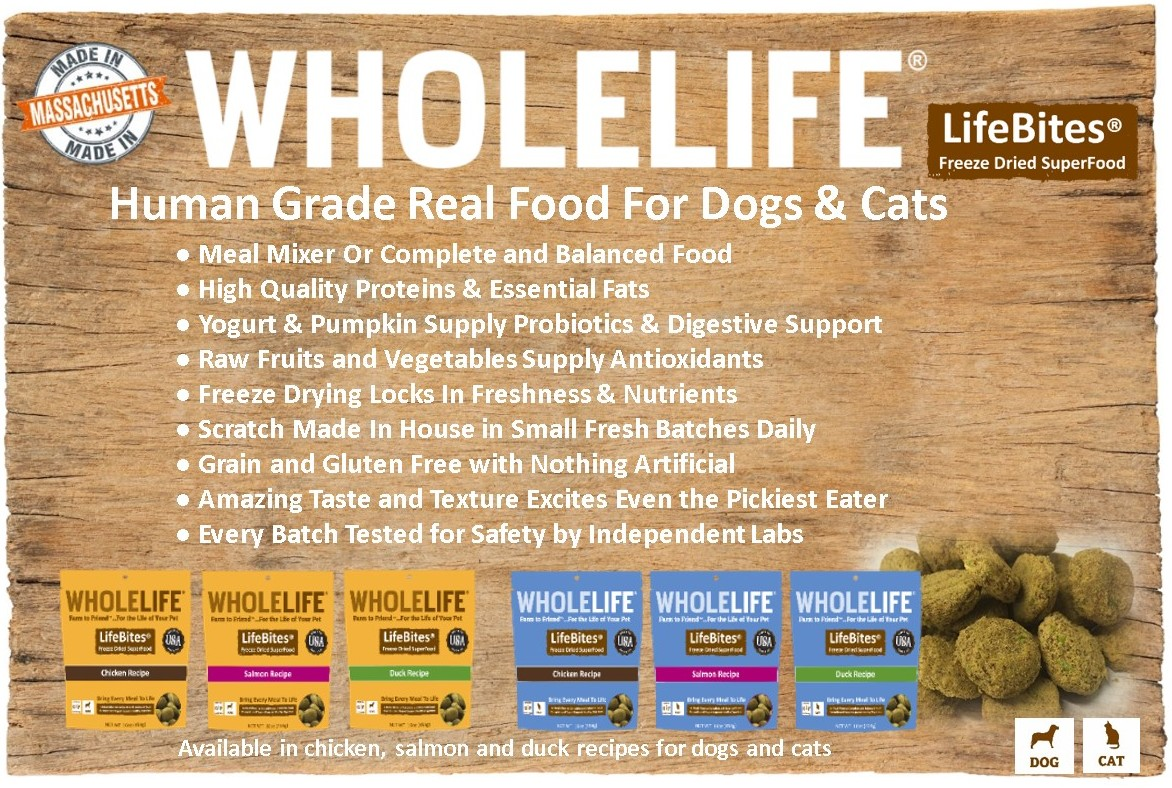 Human Grade Dog Food Brands List