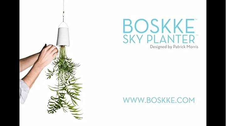 boskke deckenseil mit haken f r sky planter ceramic garten. Black Bedroom Furniture Sets. Home Design Ideas