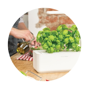 Click & Grow Smart Garden 3 Indoor Gardening Kit (Includes Basil Capsules), White 15
