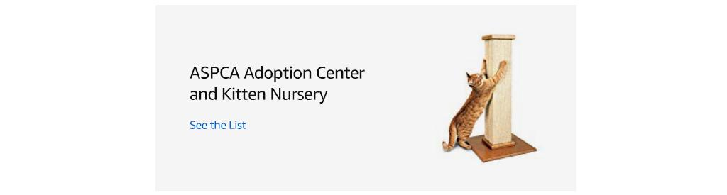 See the ASPCA Adoption Center and Kitten Nursery List.