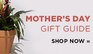 sp-3-mothers day gifts