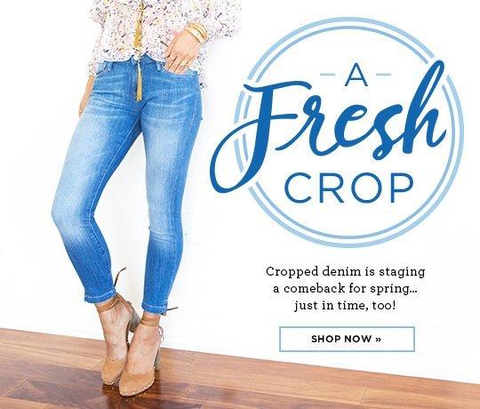 1-zap-cropped jeans