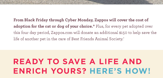Black Friday to Cyber Monday - FREE pet adoption