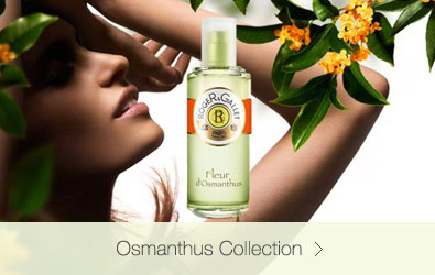 Osmanthus Collection