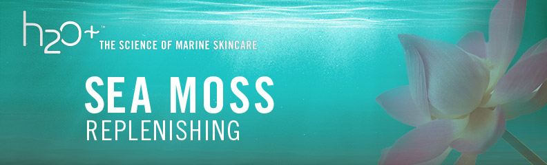 H2o the science of marine skincare sea moss replenishing