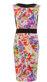 Twiggy for M&S Woman Floral Block Dress £45