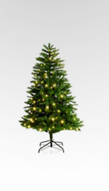 6ft Pre-Lit Highland Tree