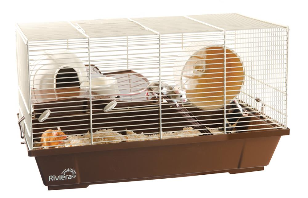 One Cage™ Ventilated Racks & Cages for rats, mice, hamsters ...