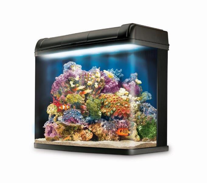 Kent marine bio reef ready led aquarium 94 litre amazon for Aquarium marin complet