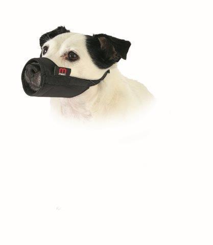 Multi Dog Training System