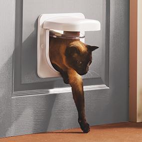 pet door, cat flap, glass, wall, door, microchip, timer