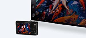 Sony, RX100M3, advanced camera, 20.1mp, 1.0 type sensor, 3 inch lcd
