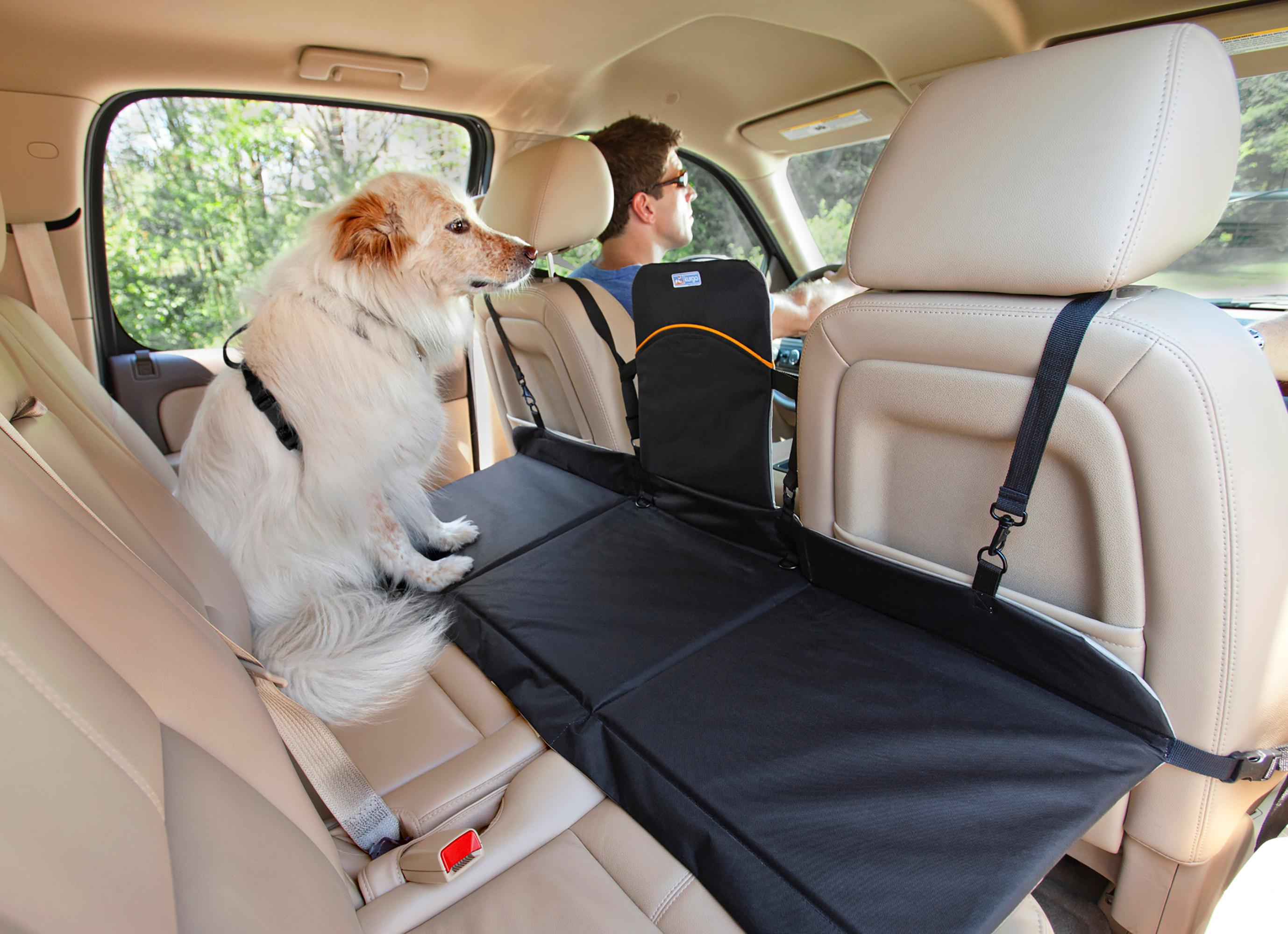 Amazon Best Rated Car Seat For Dogs