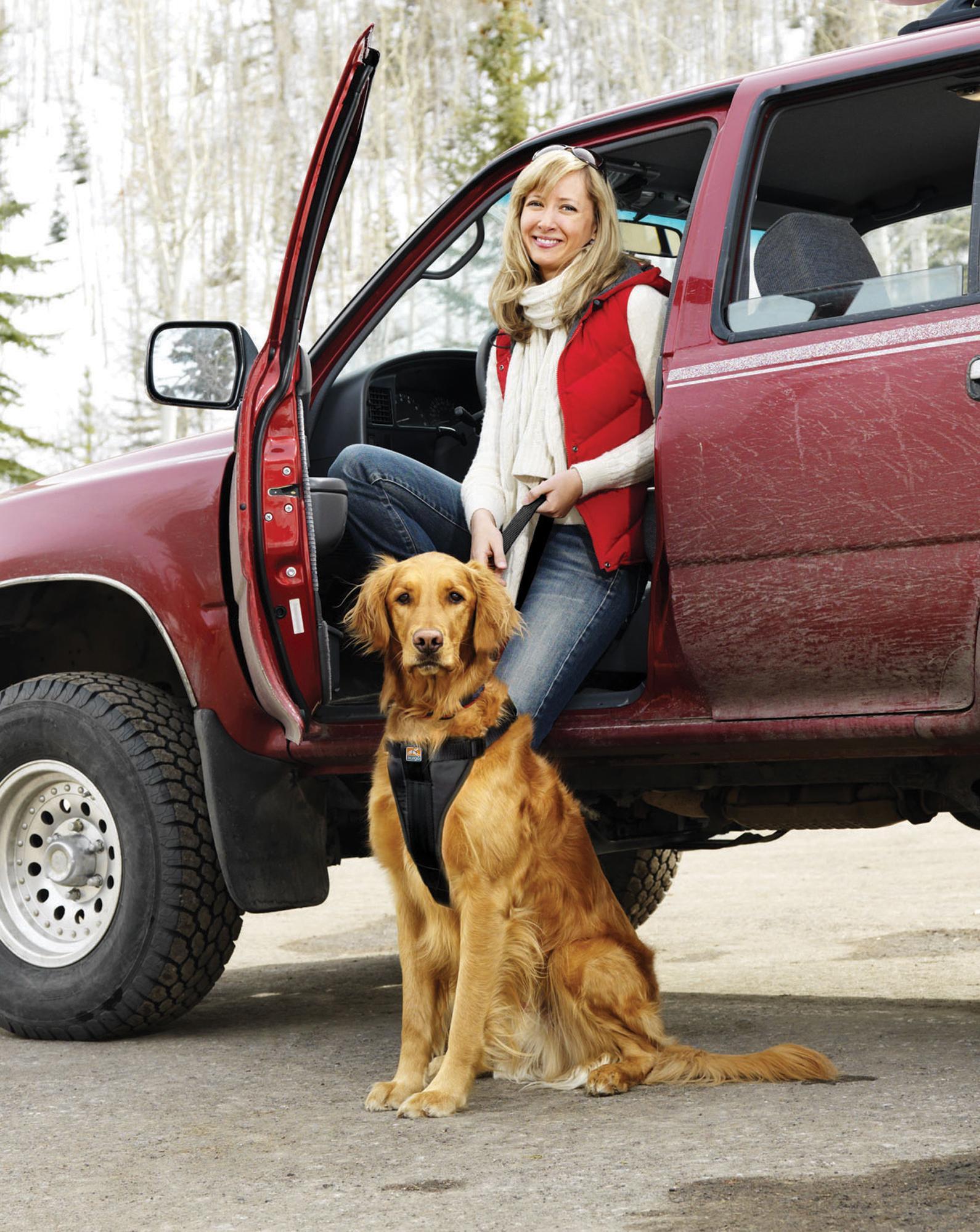 Kurgo Vehicle Safety Harness For Dogs Universal Seatbelt