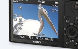 SONY, DSCRX100, advanced digital compact premium camera, large 1-inch sensor