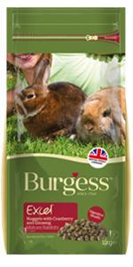 burgess_adult_rabbit_mature