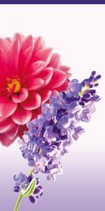 Floral / Lavender