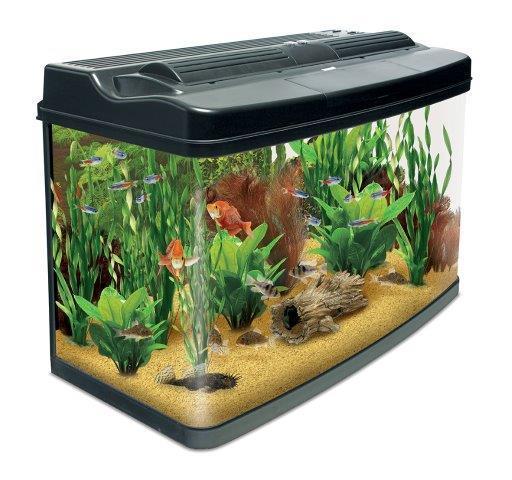 Interpet fish pod glass aquarium fish tank 120 l amazon for Aquarium 120l