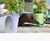 Plant Containers & Accessories