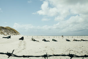 Unter-dem-Sand_ 03