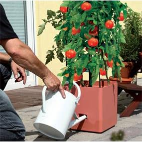 bio green pflanzen aufzucht turm maxitom mit rankhilfe f r tomaten und 2 5 l wasserspeicher. Black Bedroom Furniture Sets. Home Design Ideas