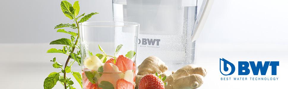 BWT Penguin Tischwasserfilter 2,7l, Wasserfilter für Leitungswasser