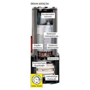 DRAIN 6000/36
