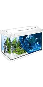 tetra aquaart discovery line led aquarium komplett set 60 liter anthrazit inklusive led. Black Bedroom Furniture Sets. Home Design Ideas