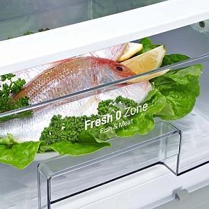 Fresh O Zone