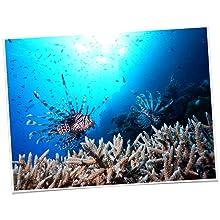 Nikon_COOLPIX_AW130_Unterwasserblitz