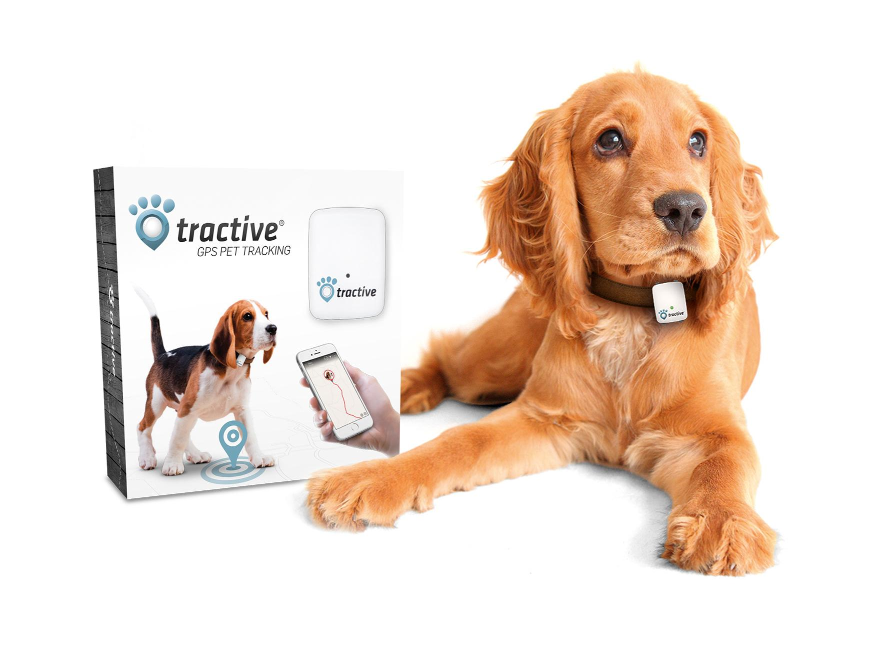 Tractive GPS Tracker für Hunde und Katzen: Amazon.de: Haustier