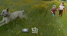 4K-Video- und 4K-Foto – nie den perfekten Moment verpassen