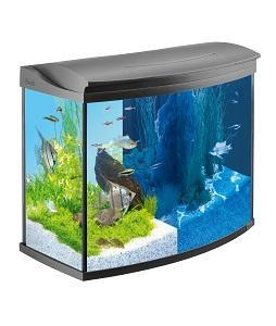 tetra aquaart evolution line led aquarium komplett set 100 liter anthrazit moderne led. Black Bedroom Furniture Sets. Home Design Ideas