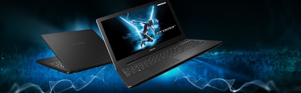 MEDION ERAZER P6661 39,6 cm Gaming Laptop: Amazon.de