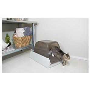 ScoopFree, Abfall, Katzen, Kätzchen, Katzentoilette,katzenklo