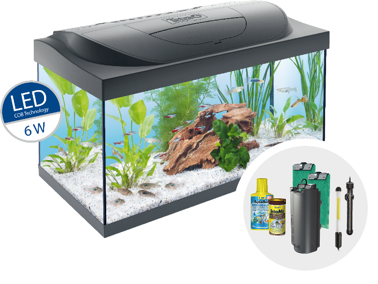 tetra starter line aquarium komplettset mit led beleuchtung stabiles 54 liter einsteigerbecken. Black Bedroom Furniture Sets. Home Design Ideas