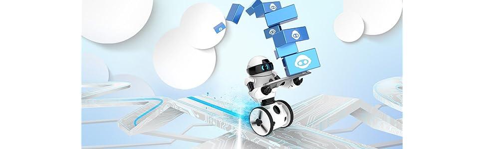 MIP balancierender Roboter