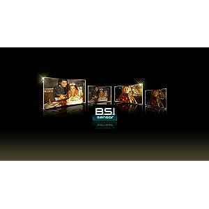 BSI-Sensor