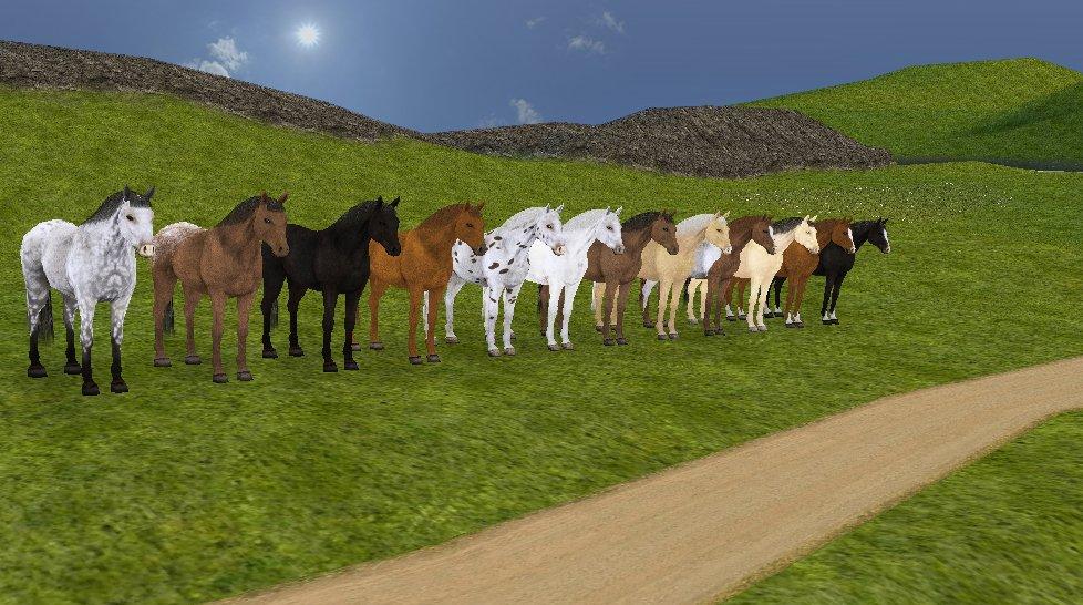 Horse Life 4: Mein Pferd, mein Freund, mein Champion (3DS