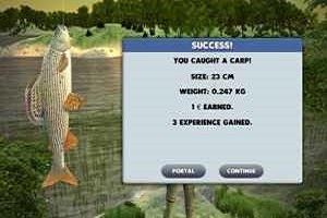 Arcade Fishing, Abbildung #06