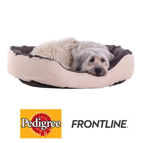 Pedigree, Petsafe, Furminator... : -30% sur nos produits pour chiens
