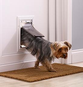 petsafe petite chati re staywell robuste en aluminium pour chat et petit chien avec syst me de. Black Bedroom Furniture Sets. Home Design Ideas