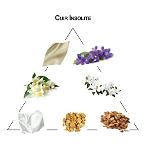 Welton - Parfum pour soi - Cuir Insolite100 ml Edt 3