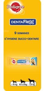 dentaflex, süßigkeiten, zahn, zahnpflege, hund