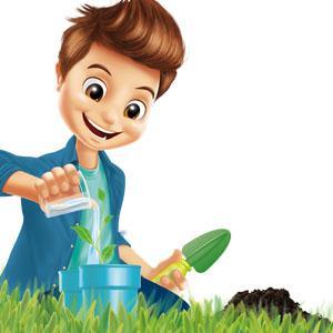 Buki 2047 des insectes et des plantes jeux for Vers dans les plantes