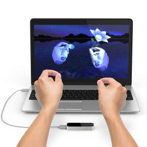 leap motion, controlleur, controller, flower, playground, application, 3d