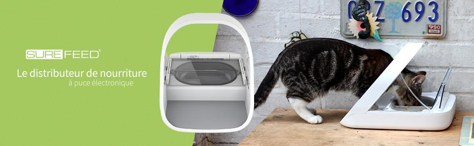 surefeed distributeur de nourriture puce lectronique pour chat et petit chien blanc amazon. Black Bedroom Furniture Sets. Home Design Ideas