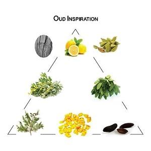Welton - Parfum pour soi - Oud Inspiration 5