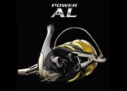 POWER AL. BODY