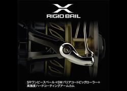 X-RIGID BAIL